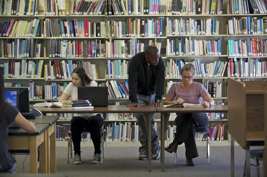 Students in library studying