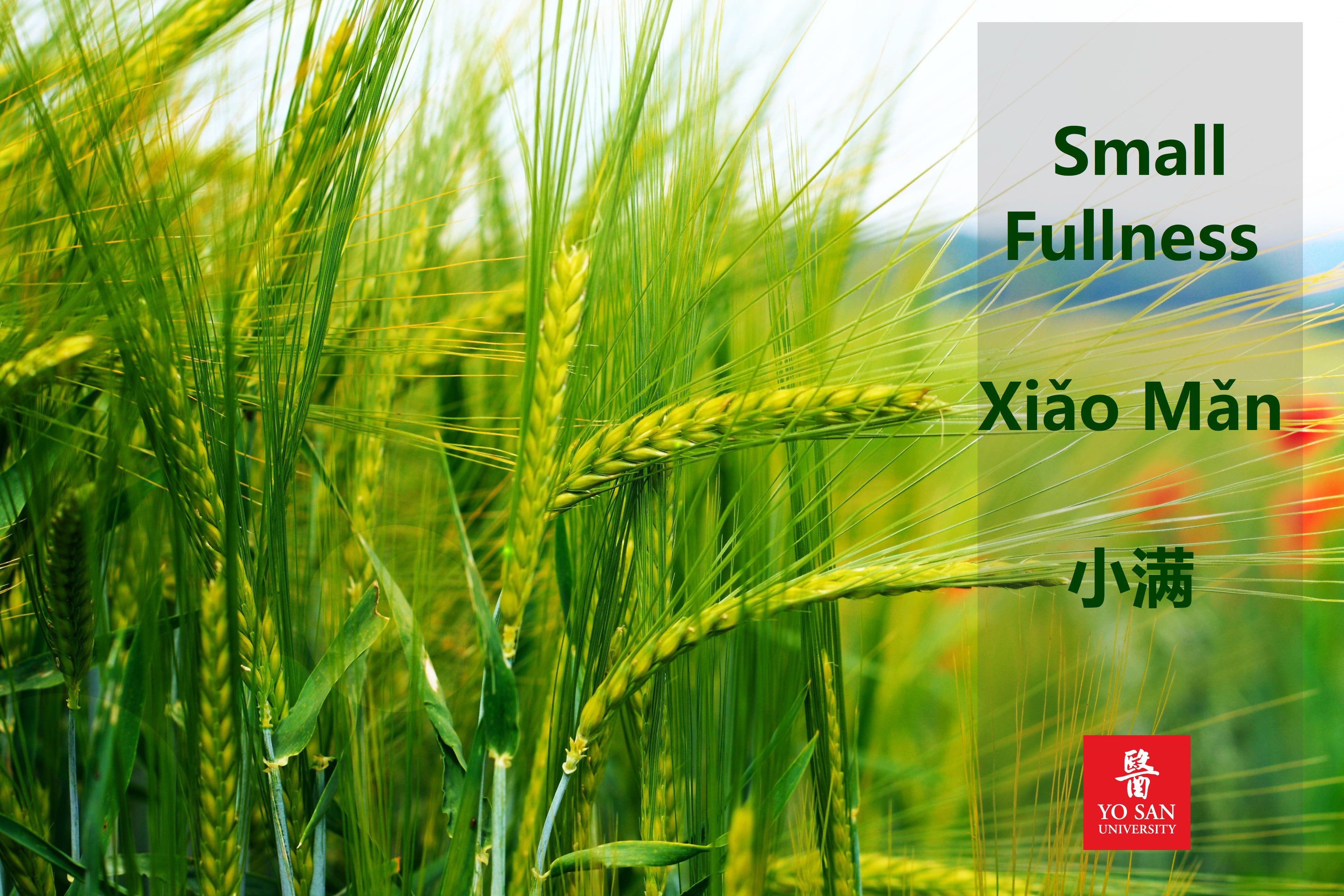 Small Fullness Xiǎo Mǎn 小满