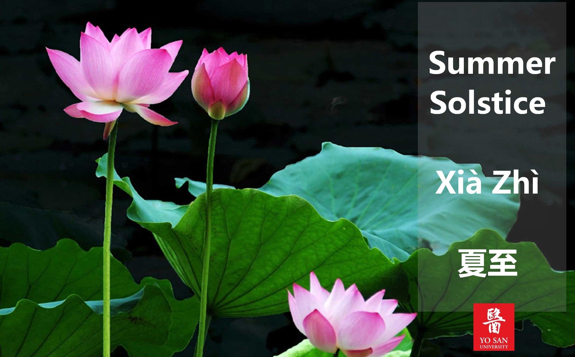 Summer Solstice Xià Zhì 夏至